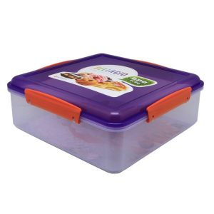 Kids School Plastic Lunchbox
